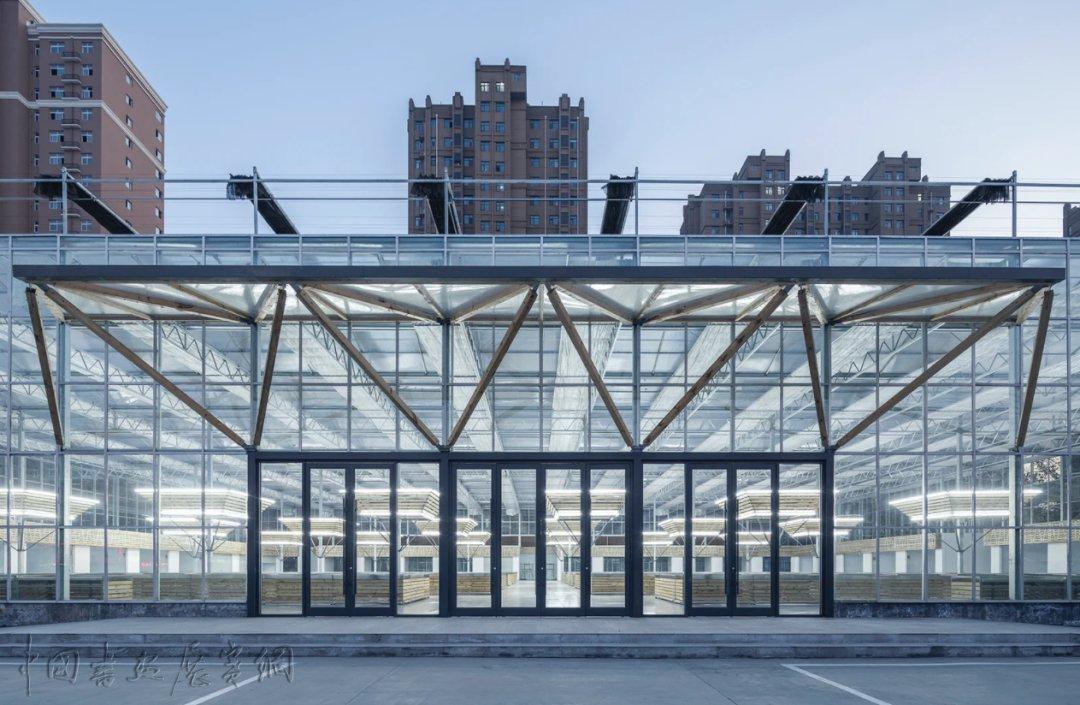 """从大兴机场到""""山之厕"""",这些获奖建筑引领了中国潮流"""